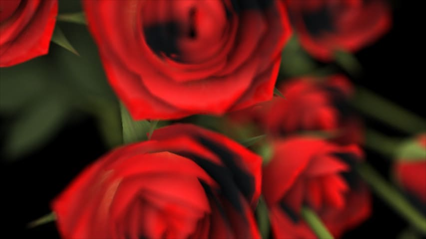 Видео-фон с Красными Розами — Футаж Full HD 1920×1080
